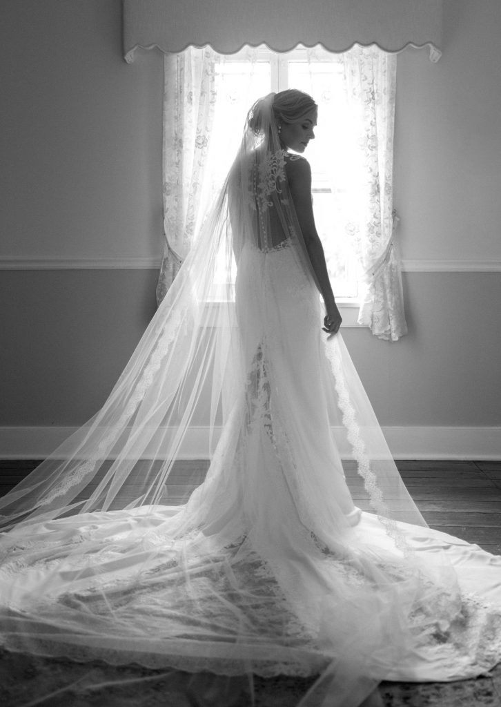 wedding veil photo
