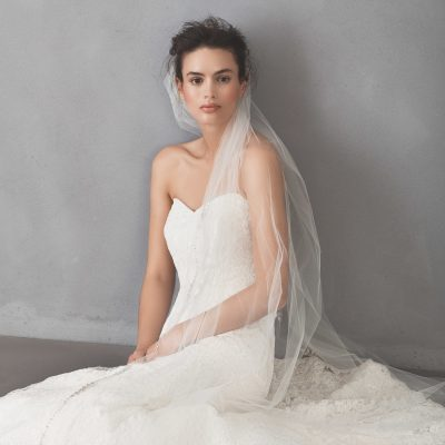 Cathedral Tulle Beaded Bridal Veil