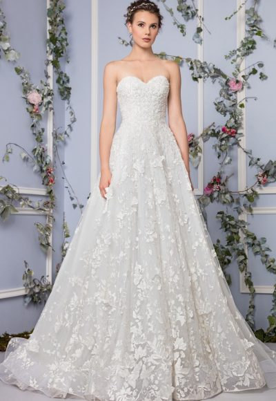 Romantic A-line Wedding Dress by Tony Ward