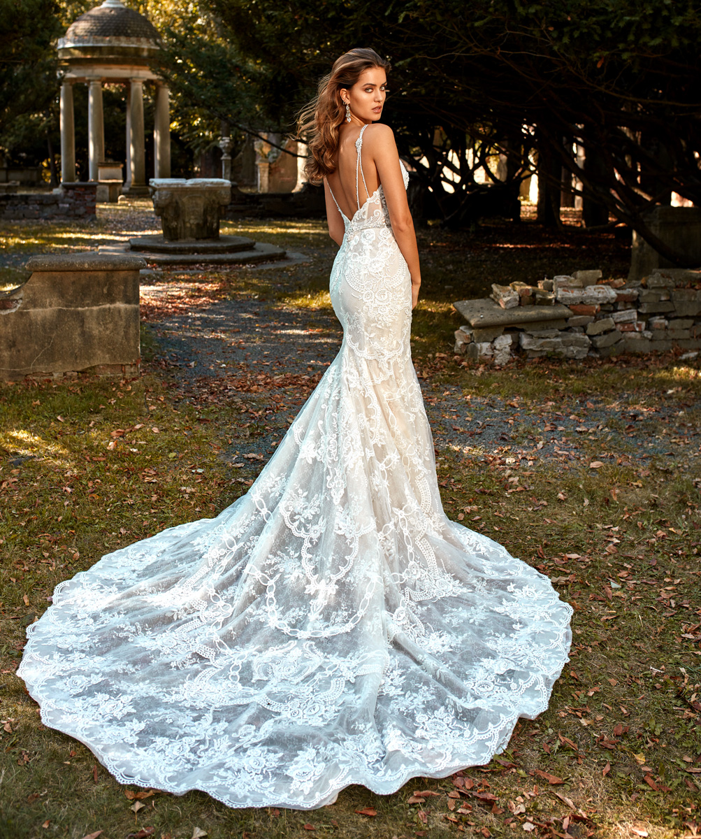 Wedding Gown With Lace: Deep V-neck Beaded And Embellished Lace Fit And Flare
