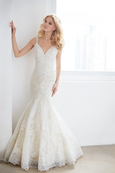 V-neck Sleeveless Beaded Lace Fit And Flare Wedding Dress by Madison James - Image 1