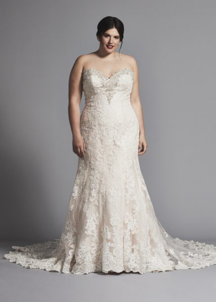 Fit And Flare Lace Wedding Dress With Beading At Neckline by Danielle Caprese - Image 1