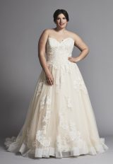 Strapless A-line Lace Wedding Dress With Horsehair Trim by Danielle Caprese - Image 1