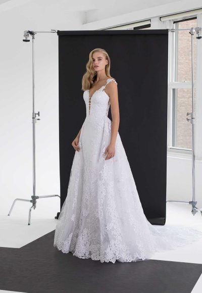 V-neck Fit And Flare Wedding Dress With Floral Appliques And Illusion Back by Pnina Tornai