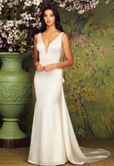 V-Neck Sleeveless Fit And Flare Wedding Dress by Paloma Blanca