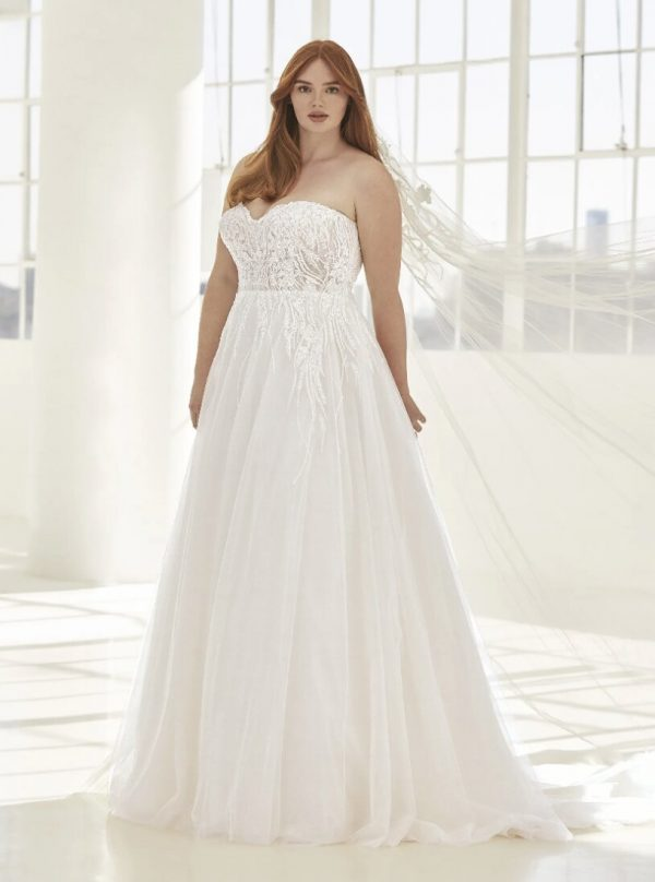 A-line Wedding Dress In Embroidered Tulle With Open Back by Pronovias - Image 1
