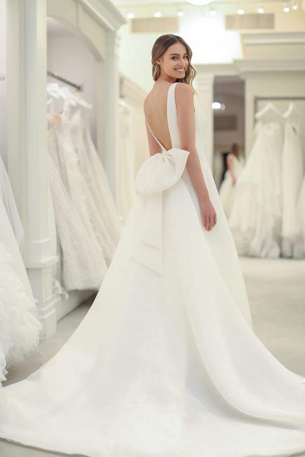 Sleeveless V-neck A-line Wedding Dress by Michelle Roth - Image 2