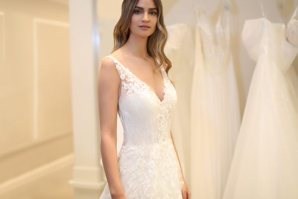 Sleeveless V-neckline Lace A-line Wedding Dress by Michelle Roth - Image 1